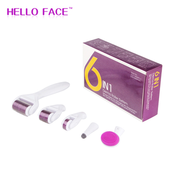 DRS 6 in 1 Derma Roller Microneedle Kits For Multiple Skin Care Treatment Facial Dermaroller with 5 Roller Head derma roller set 1