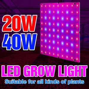 Phyto Lamp 220V 20W 40W Grow Light LED Full Spectrum Indoor Greenhouse Plant Hydroponic Plant Spotlight LED Grow Tent 110V 2835