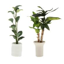 1:12 puppenhaus Miniaturen in Topf Pflanzen Brasiletto Garten Dekor Ornament