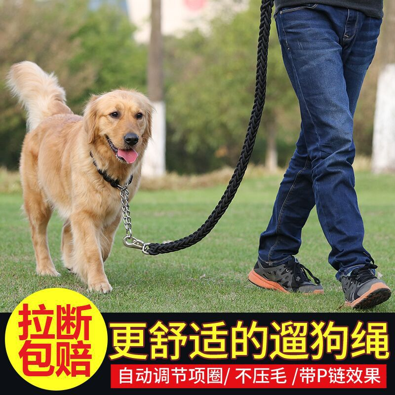 Dog Traction Golden Retriever Labrador Chain Medium Large Dog Dog Lanyard Sub-Lanyard P Lado Dog Chain Chinlon Dog