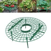 Morango crescente círculo suporte rack bandeja de jardinagem varanda frutas vegetais videira plantas quadro de proteção suporte