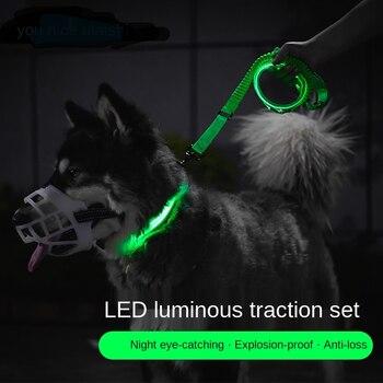 LED Dog Leash & Collar Traction Grip Leash   1