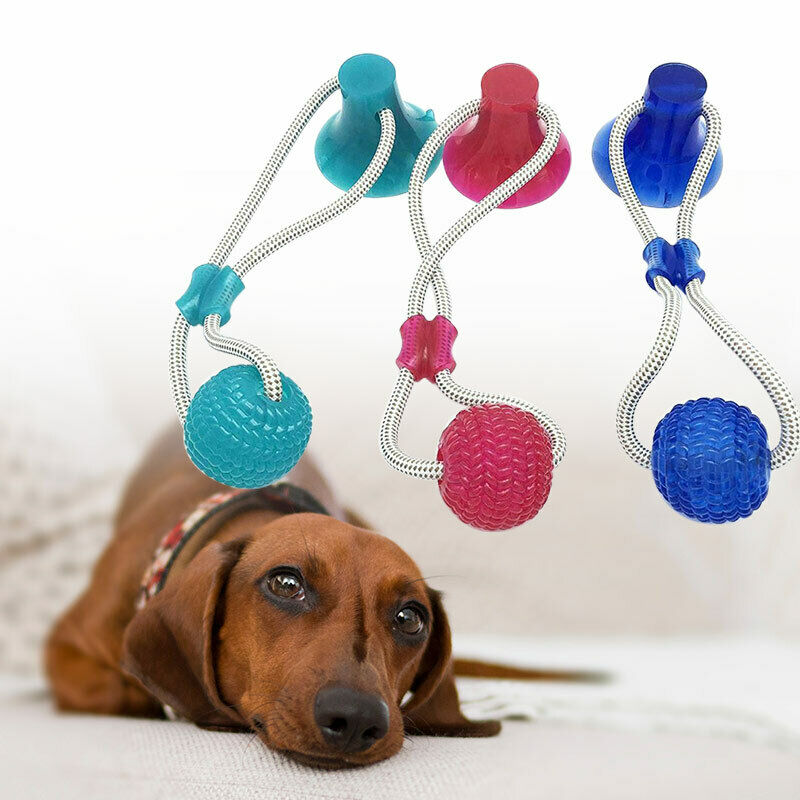 Pet Toys with Suction Cup Dog Ball Dog Toothbrush Rubber Dog Toy Puppy Toys Dog Toys for Large Small Dogs Popular Toys Petshop 8