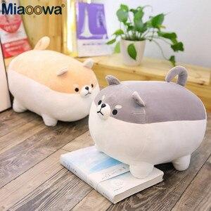 Image 3 - Yeni 40/50cm sevimli Shiba Inu köpek peluş oyuncak dolması yumuşak hayvan Corgi Chai yastık noel hediyesi çocuklar için Kawaii sevgililer günü