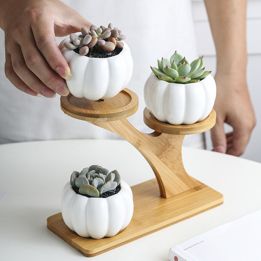 3 Tier Indoor Desk With Drainage Pumpkin Succulent Pots Mini Home Office Garden Decoration Bamboo Stand Set Planter Modern