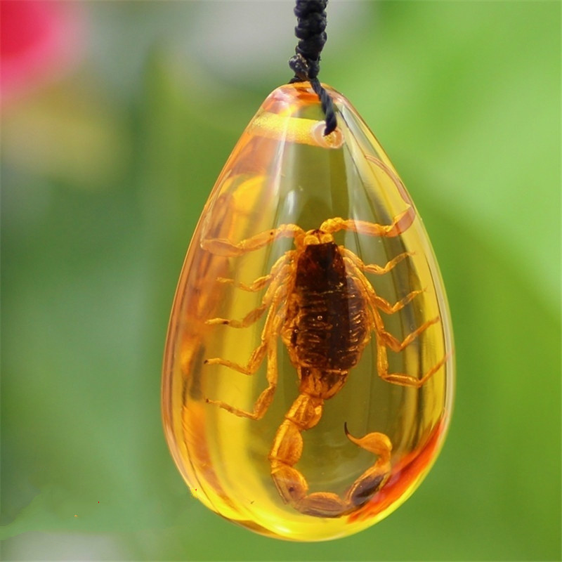 Insect Stone Natural Scorpions Inclusion Amber Baltic Pendant Necklace Home Decorative Stone(China)