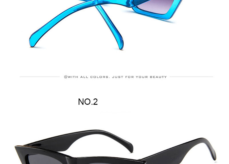 Fashion Cat Eye Sunglasses Women Brand Designer 2020 Vintage Candy Color Lens Sun Glasses Female Lady Sunglass Gradient Plastic (13)