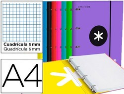 WITH SPARE PART AND FLAP FOLDER LIDERPAPEL ANTARTIK A4 TABLE 5MM LINED 4 RINGS ROUND 40MM COLORS ASSORTED 10 units