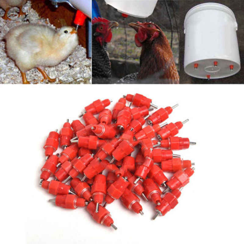 10pcs Chicken Nipple Drinker Water Waterfowl Stainless Steel Hen Poultry Feeder