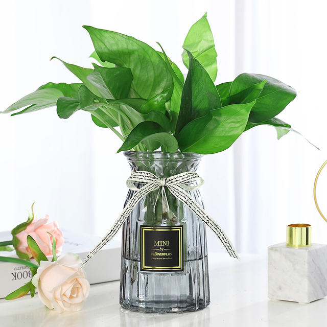 Contracted Flower Glass Vase Origami Flower Arranging Green Plants Hydroponic Device Nordic Vase Decoration Home Flower Vase 3