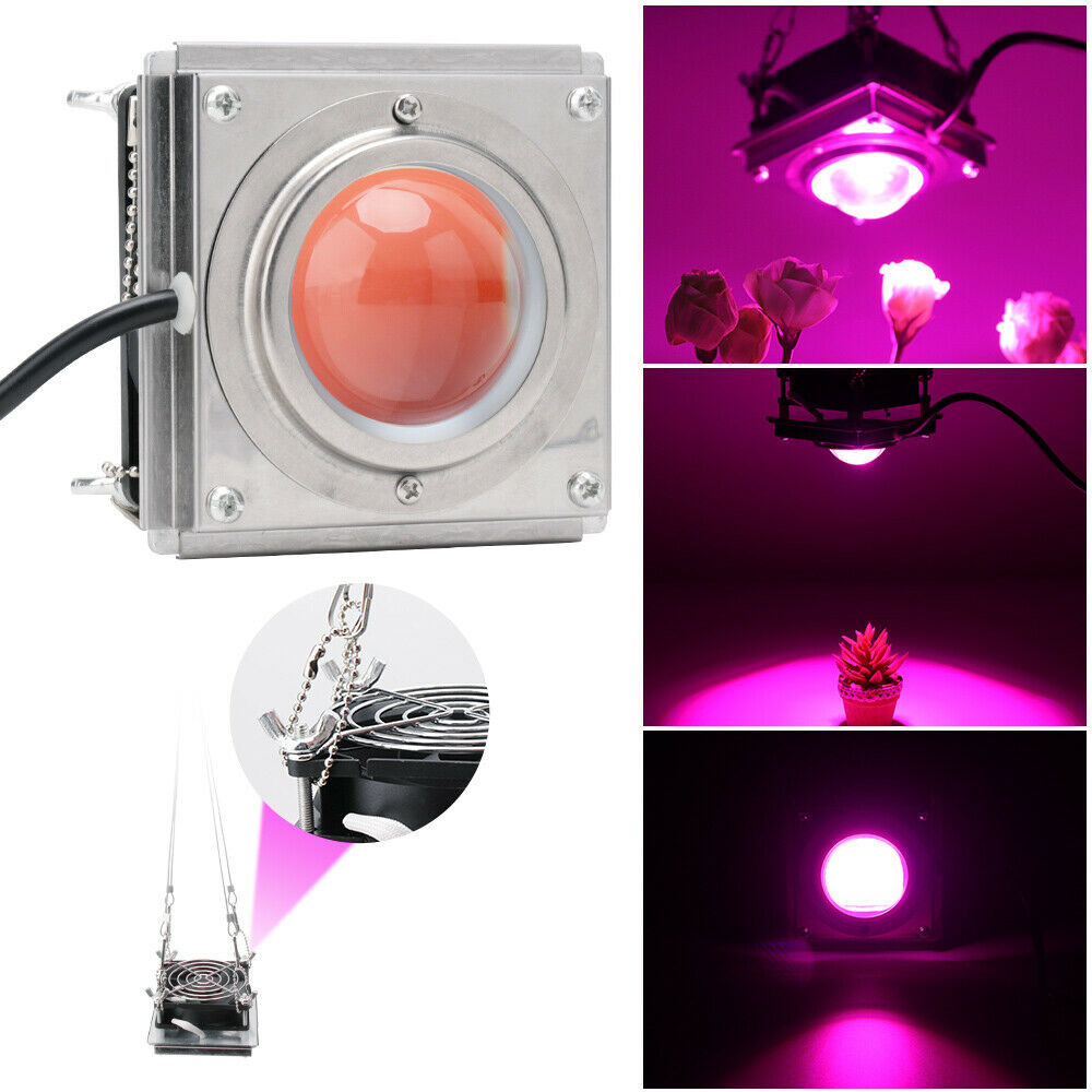 3000W 4000K Full Spectrum COB LED Grow Light For Plants Growing Lamp Tent Garden Fitolampy Phyto Seed Plant Flowers Growth