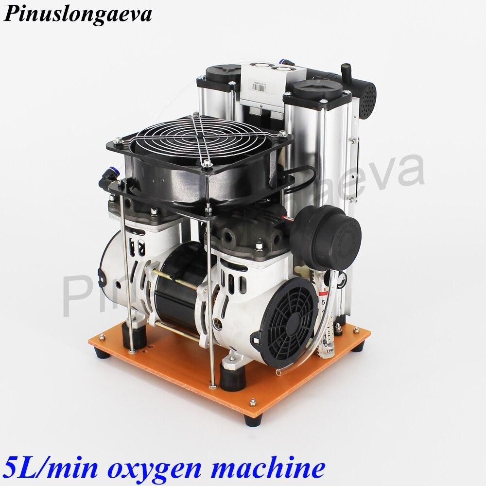 Pinuslongaeva PSA 3L 5L 10L 15L 20L 30L 96% Importiert Molekulare Sieb Hohe konzentration medizinische hause Sauerstoff generator maschine