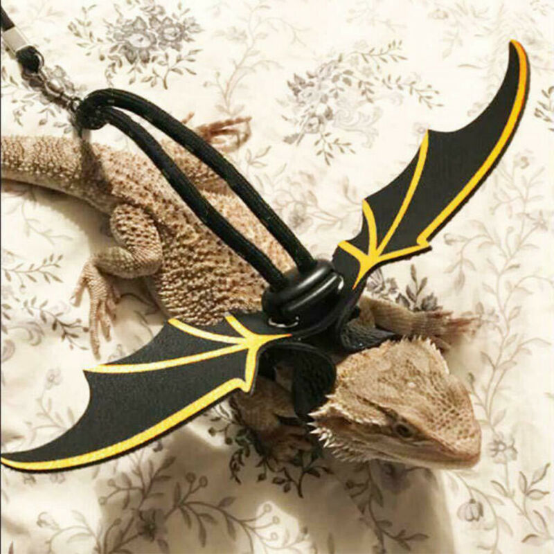 Adjustable Reptile Lizard Gecko Bearded Dragon Harness And Leash Strap Wings