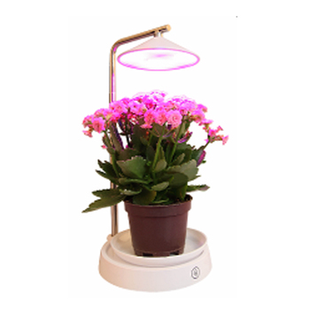 Becostar LED Desk Lamp for Plant Grow Hydroponic Growing Multifunction Plant Flower Lamp with USB Cable