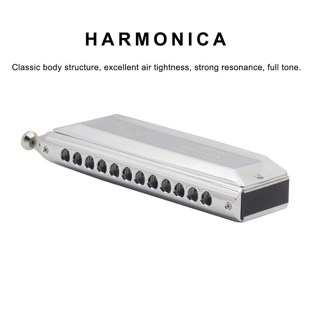 Harmonica chromatique 48 tons 12 trous pour Instrument de musique débutant livraison rapide petite et exquise
