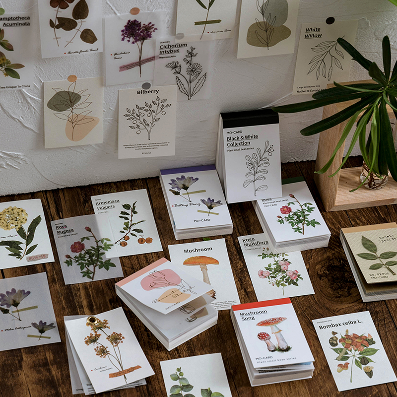 50 pieces of beautiful plants retro kadekov stationery lomo card stationery Notepad post it notes retro style