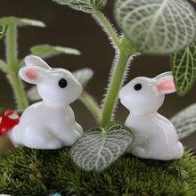 2 шт. милые резиновые растения кролик милый микро Пейзаж украшения для суккулентов растение украшение сад миниатюры DIY кукла