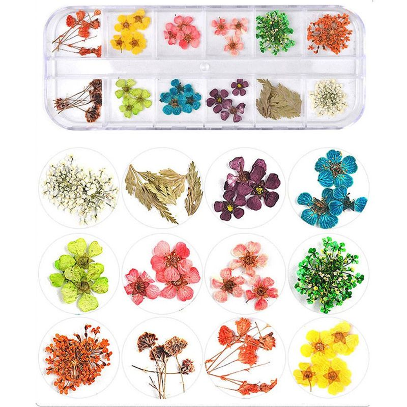 14styles 1 Box Real Pressed Flower Leaves Crystal Epoxy Filler Dried Daisy Flower Resin Art DIY Jewelry Making Nail Stickers Dec