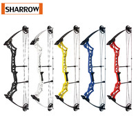 Archery M108 Compound Bow and Arrow Set Adult 30 55Lbs Shooting Competitive Sports Equipment Outdoor Hunting