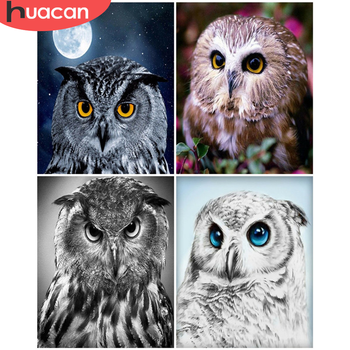 HUACAN Paint By Number Animal DIY Pictures By Numbers Owl Kits Hand Painted Painting Art Drawing On Canvas Gift Home Decor