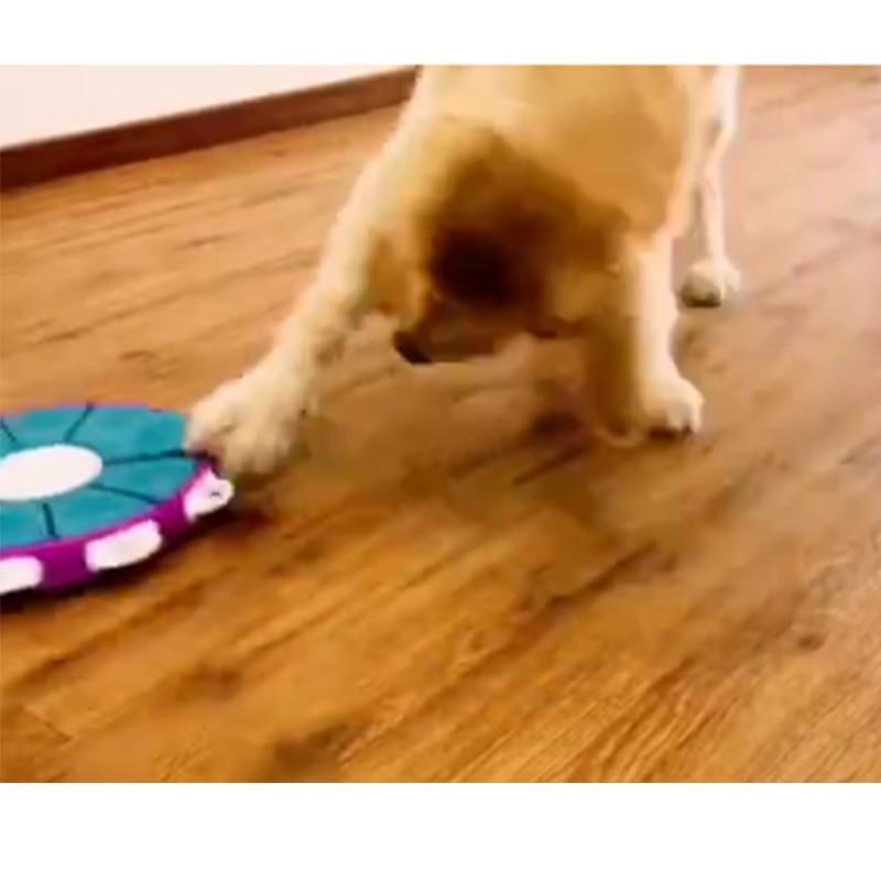 Fournitures pour animaux de compagnie chien jouet formation IQ formation lente nourriture bol petit chien protection de l'environnement jeune chat interactif le nouveau