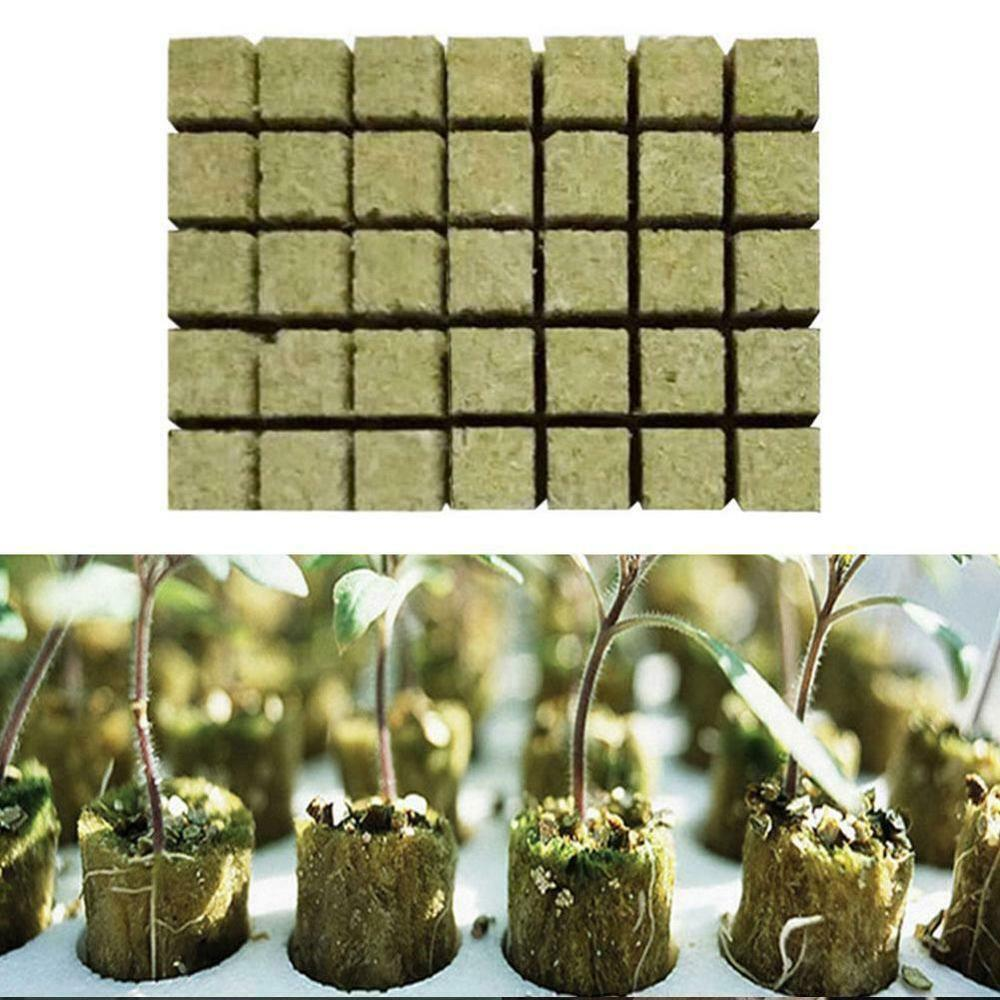 Cubes Starter Grow-Plug Rock Wool Cloning Plugs-Hydroponic Grodan 50pcs 1-Media.-Spread title=