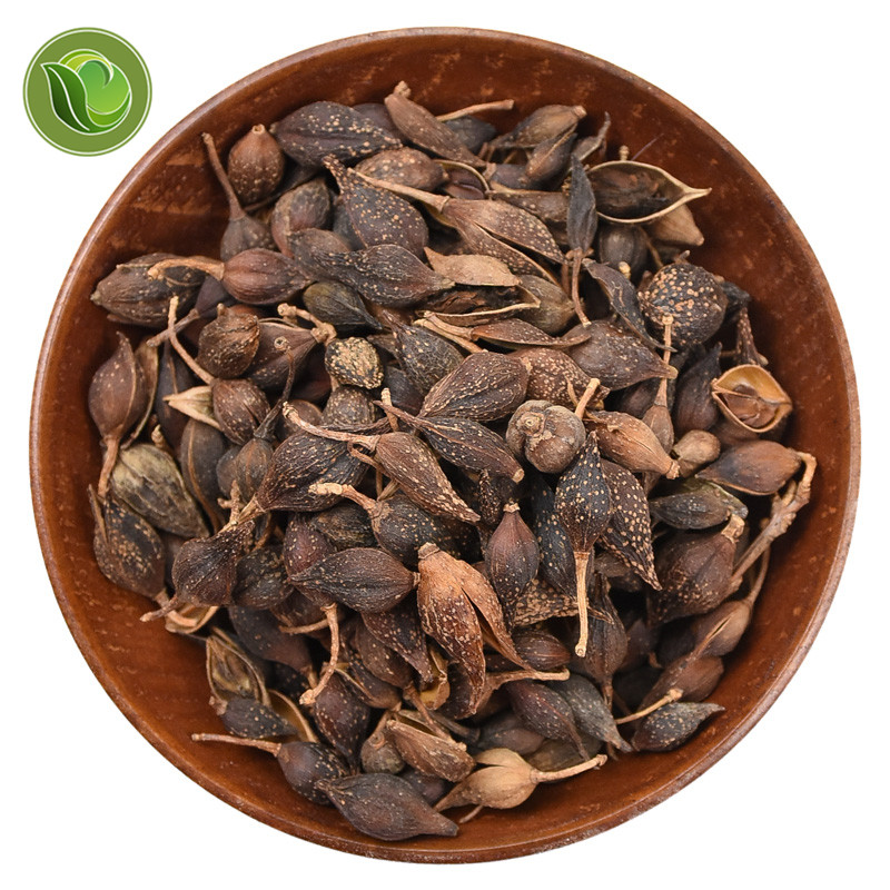 Natural Dry Herbs  Lian Qiao (Fructus Forsythiae) Chinese Herb