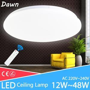 Modern Ceiling Lamp 48W 36W 24