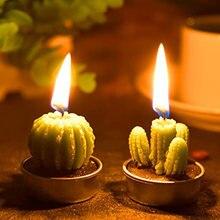 12 шт ручной работы нежный сочные свечи в форме кактуса для