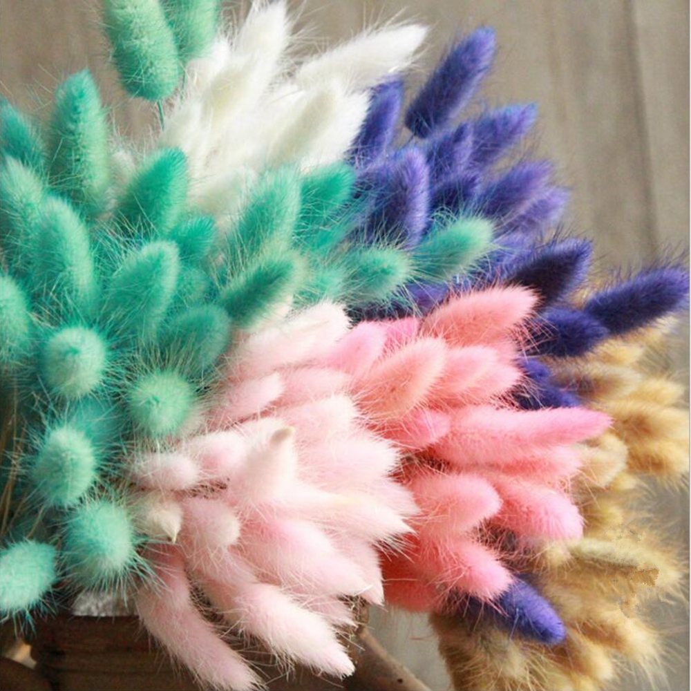 7Pcs Bulrush Natural Dried Small Pampas Grass Artificial Plants for Home Decor 4