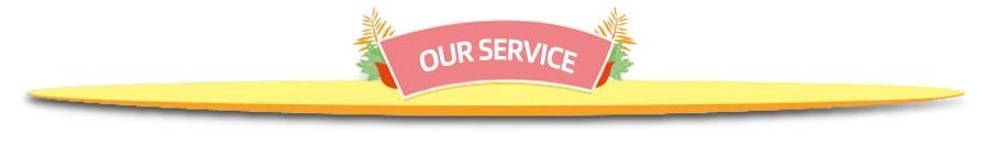 -2 service