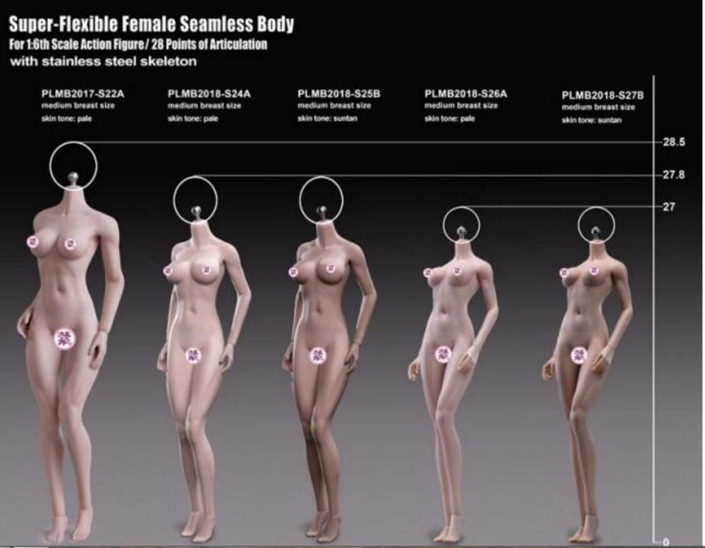TBLeague 1/6 Scale S24A S25B S26A S27B Super-Flexible Female Seamless Bodies Figures Doll For DIY Action Figure