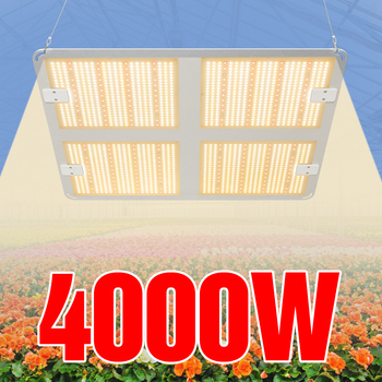 Phyto Grow Light LED Full Spectrum Indoor Fitolampy Lamp 220V Kweektentgrow Tent 1000W 2000W 4000W LED Hydroponics Plant Flower 1200w full spectrum led grow light plant lamp for plant indoor nursery flower fruit veg hydroponics system grow tent fitolampy