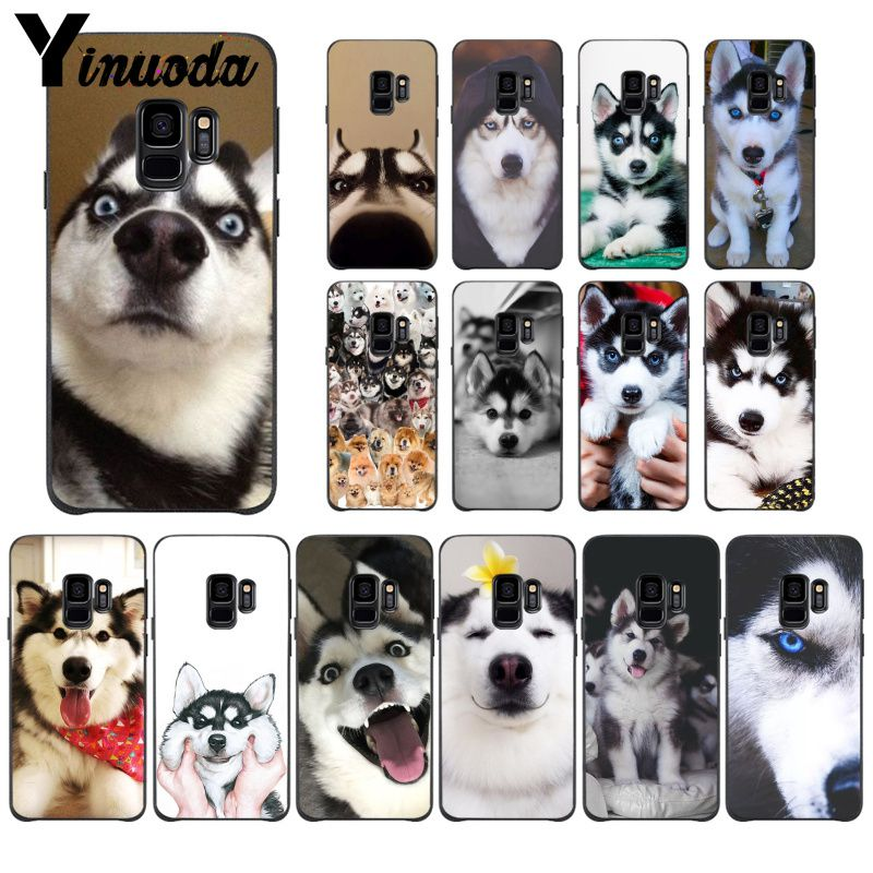 Yinuoda Animal Husky cute Puppy Dog <font><b>Phone</b></font> <font><b>Case</b></font> for <font><b>Samsung</b></font> Galaxy S9 S20 S10 Plus S10E <font><b>S6</b></font> S7 S8 S9 S9Plus S5 image