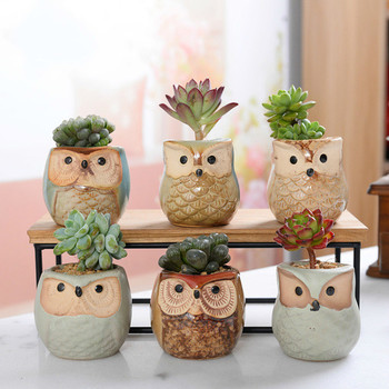 6 Sets of Owl Flower Pot Japan and South Korea Animal Mini Thumb Ceramic Set Succulent Plant