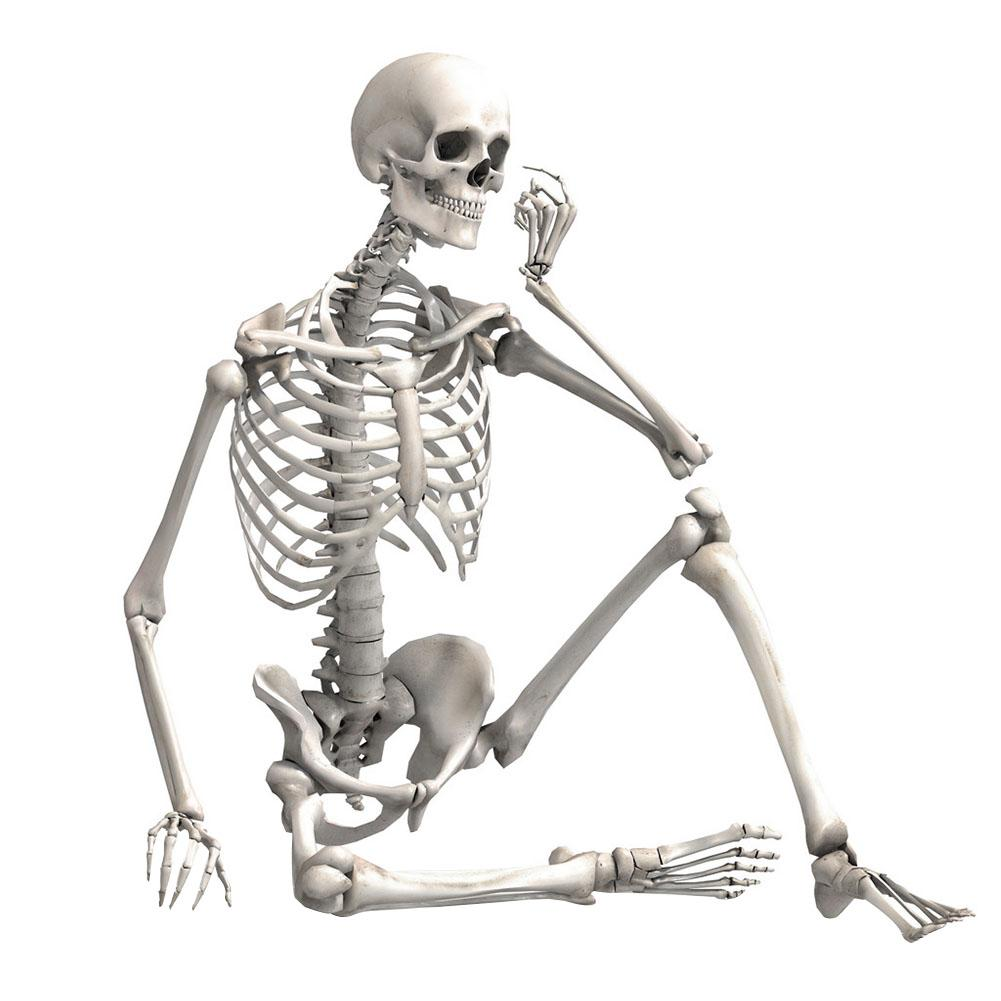 90cm Simulation Human Skeleton Ornament Halloween Party Bar Haunted House Props