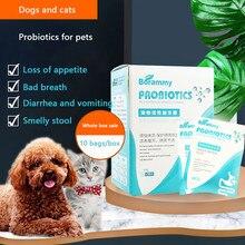 Köpekler ve kediler probiyotikler pet gastrointestinal hazine yavru kediler özel ishal ve kusma gastrointestinal klima
