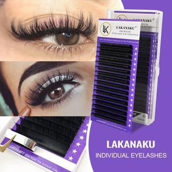 LAKANAKU Individual Eyelashes C D Private Label Mink Eyelash Extensions False Classic Eyelash Lash Extension Makeup 1
