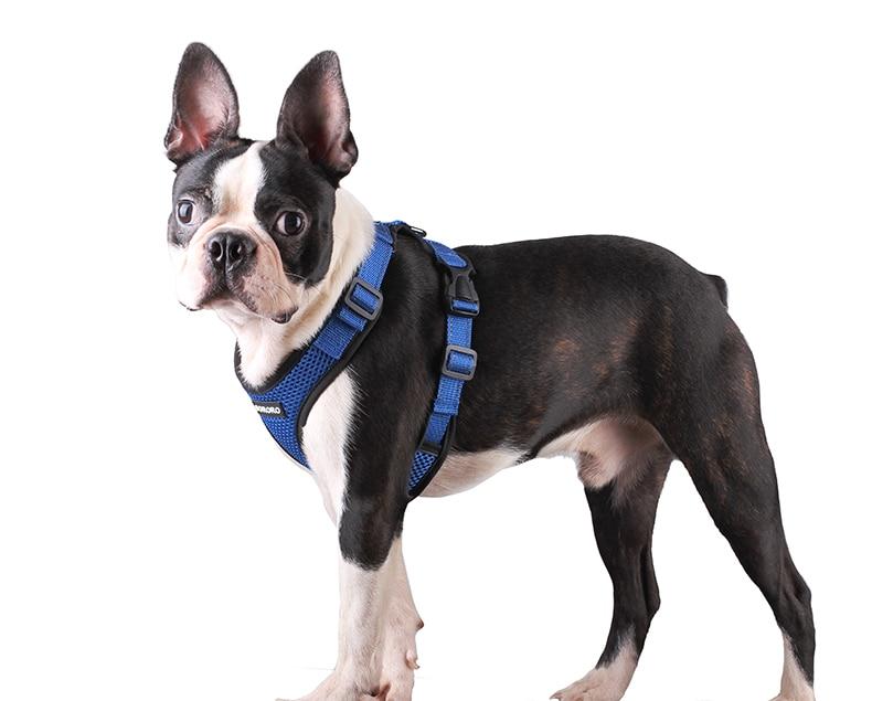 Dog Harness Vest (21)