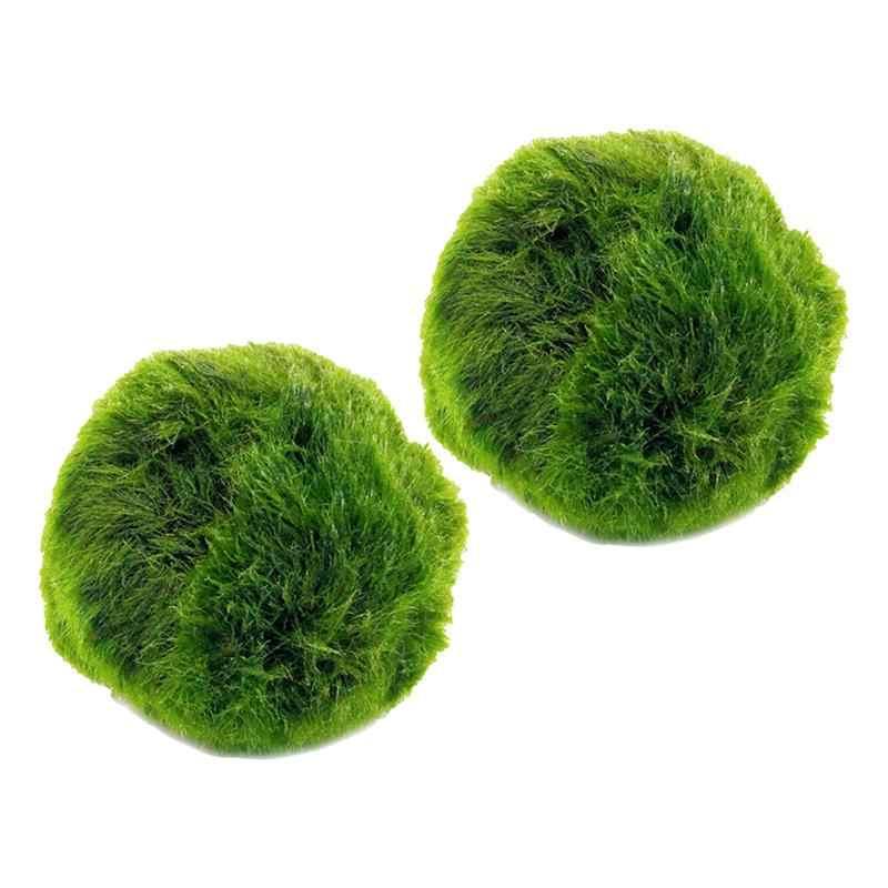 2 Pcs Verde Marimo Muschio Palla Piante Acquatiche Cladophora Sfera Terrario Ornamenti per Serbatoio di Pesci D'acquario Decorazione di Diametro