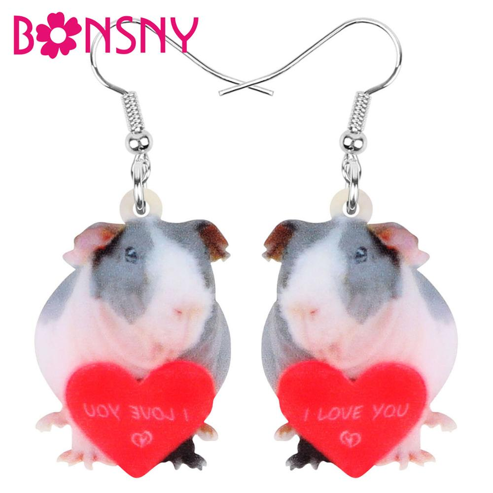 Bonsny Acrylic Valentine's Day Love Guinea Pig Rat Earrings Drop Dangle Jewelry For Lady Girls Teen Lovers Charms Gift Accessory