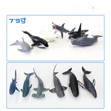 Hollow Marine organism Model sea Life animal Humpback Dolphin Sperm Hammerhead shark Blue pilot whale Beluga Toys Gift