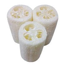 A esponja natural da lavagem do corpo de luffa remove o sabão feito da pele morta