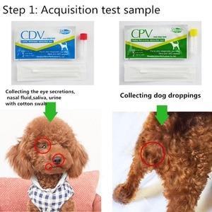 Собачья собака дистема вируса CDV/CPV домашний носовой тампон тест на здоровье бумага PR продажа