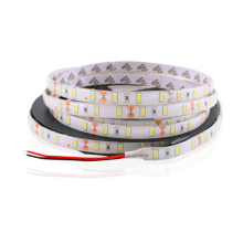 LED Strip Light 5630 SMD 60 5M Flexible Tape DC12V Cold/Warm White Waterproof 10mm PCB
