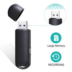 QZT Mini USB Voice Recorder Small USB Flash Drive Audio Recorder Smallest Voice Activated Recorder Pen Portable Recording Device
