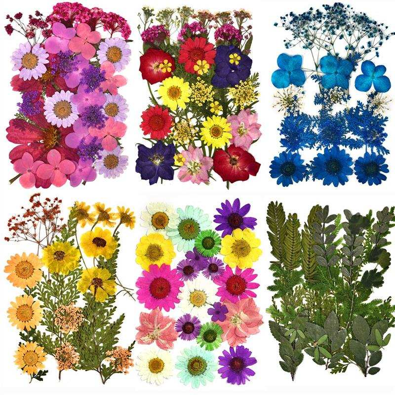 Dried-Flowers Handicraft Nail-Art Resin Mold Fillings DIY Expoxy Home-Decor UV for Pressed