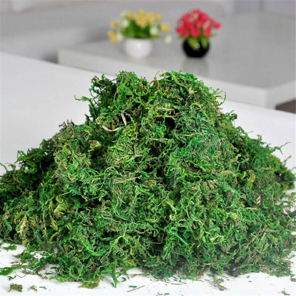 Hot Sale Natural 40g Bag Dry Real Green Moss Decorative Plants Vase Artificial Turf Silk Flower Accessories For Flowerpot Decor