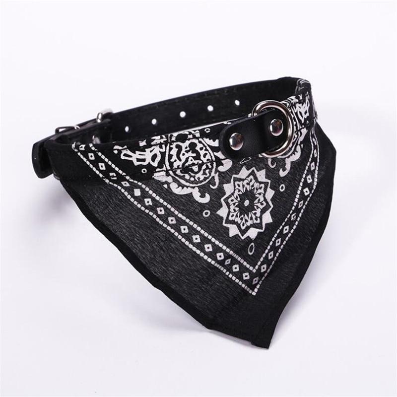 Pet collar3