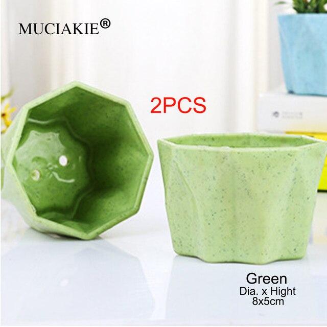 MUCIAKIE 2 adet küçük yıldız anason etli saksı renkli moda bitki saksı yaratıcı nefes reçine saksı